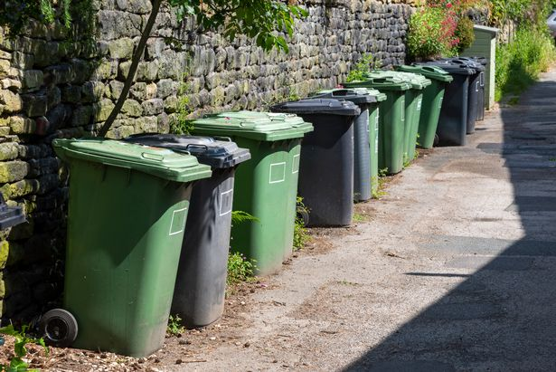 Keep your bin pest-free by washing it once a month