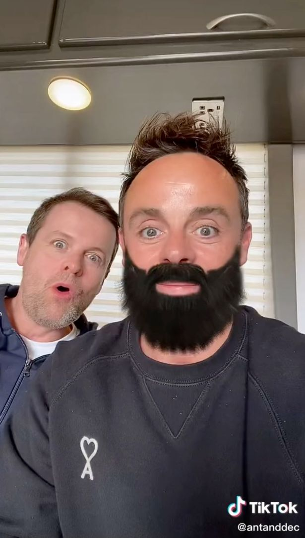 Ant and Dec with beards on TikTok