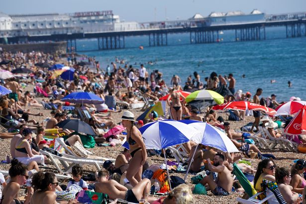 Sun worshippers will flock to the beaches and parks to enjoy the 24C sunshine