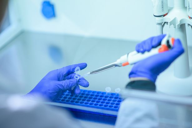 Genome sequencing is easier - and cheaper - than ever before