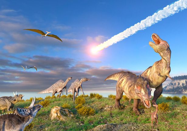 Illustration of the K T Event at the end of the Cretaceous Period. A ten-kilometre-wide asteroid or comet is entering the Earths atmosphere as dinosaurs, including T. rex, look on.