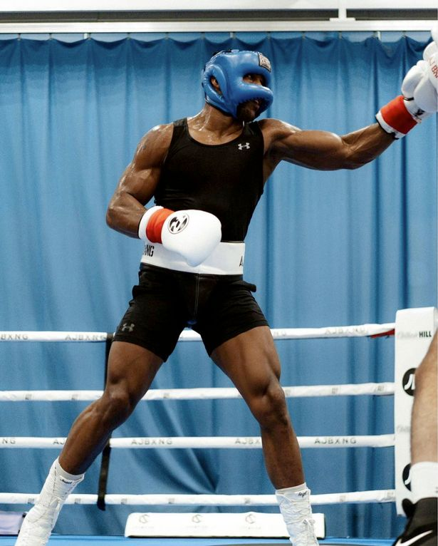 Joshua has only faced one southpaw as a professional before