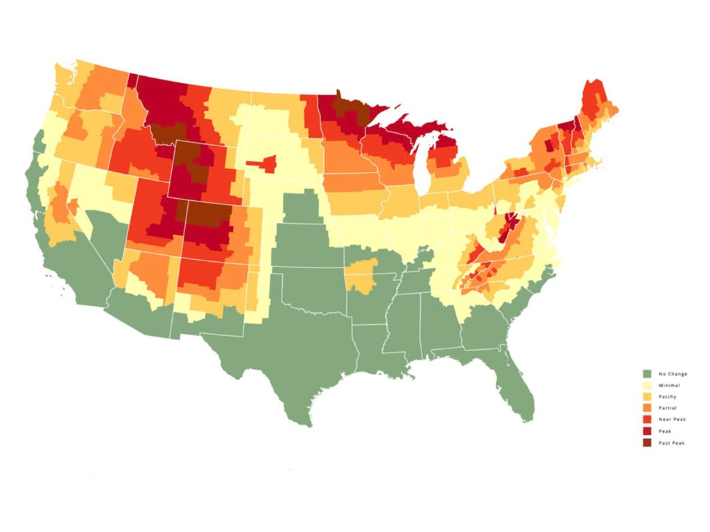 Fall foliage predictor map: The best places to see the leaves change across the U.S.