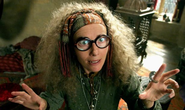 Oscar-winning actress Emma Thompson appeared in three of the Harry Potter films