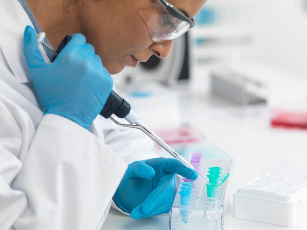 A scientist carries out tests in a lab