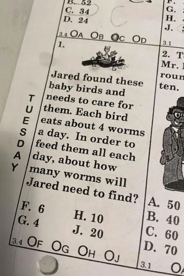 Parents left stumped over tricky maths question designed for eight-year-olds
